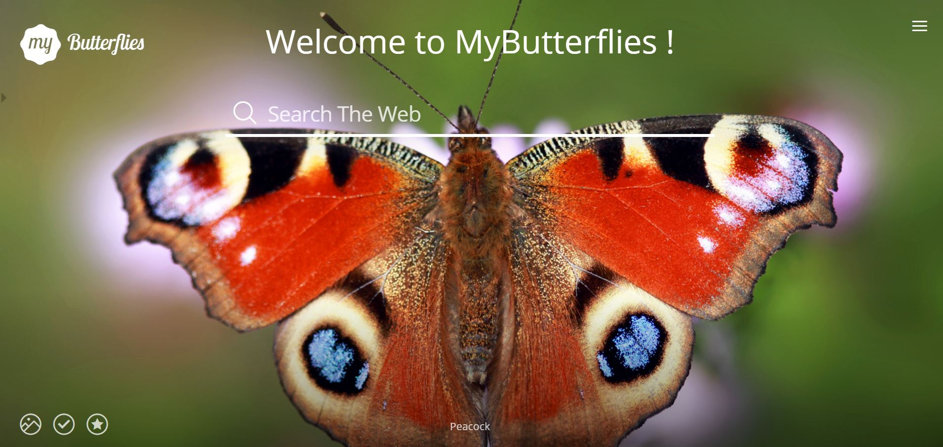 My Butterflies images