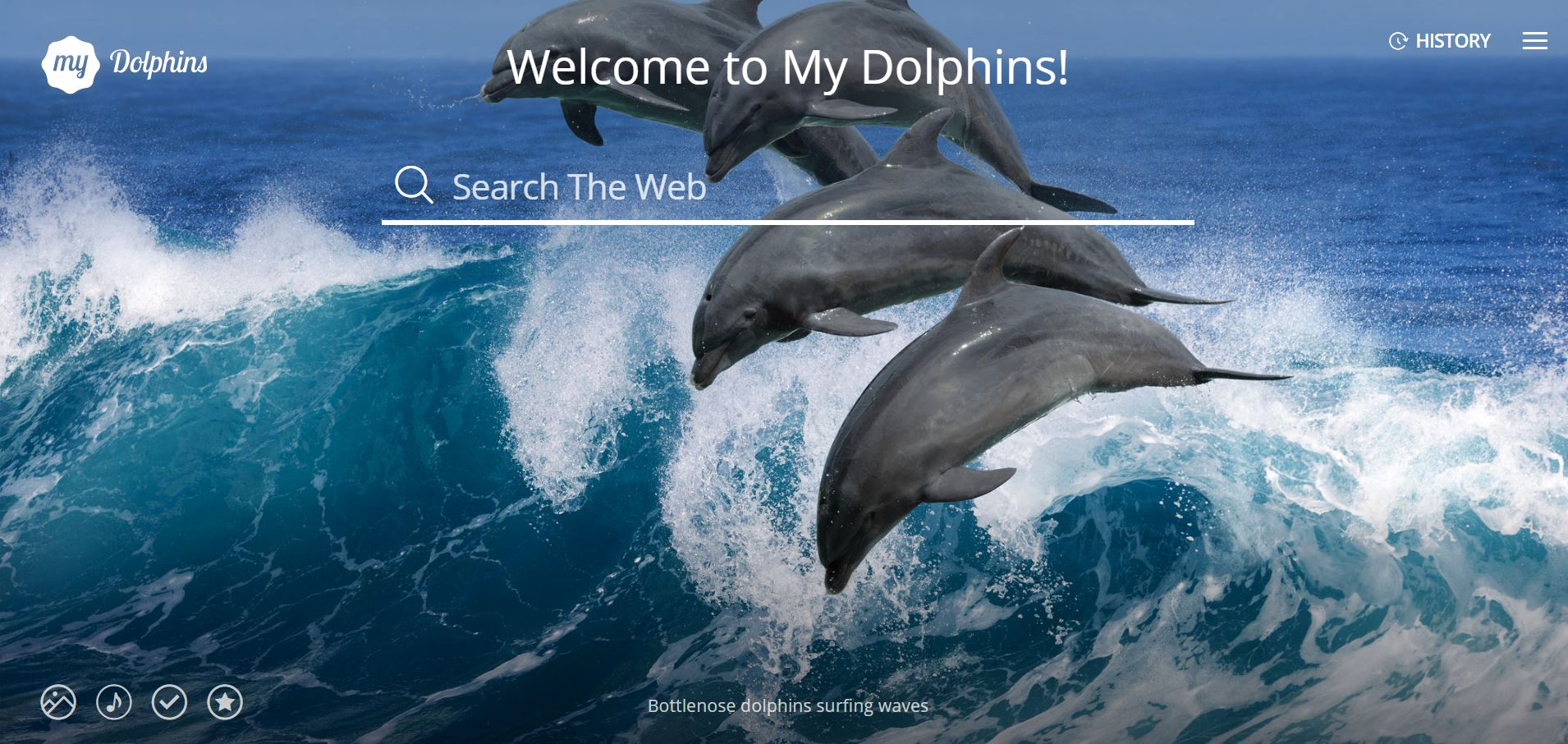 My Dolphins pictures