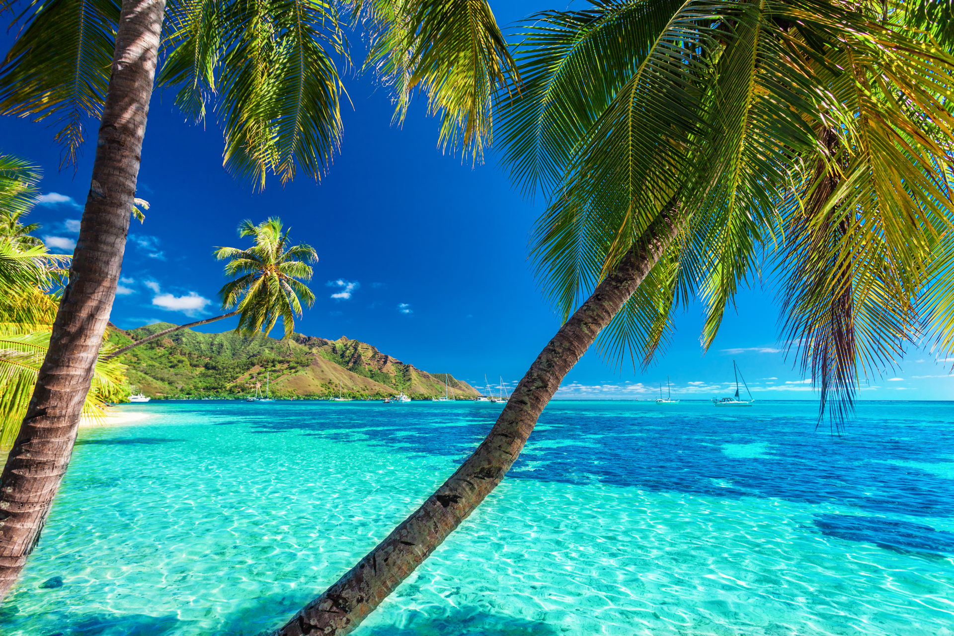 Beautiful hidden tropical beach